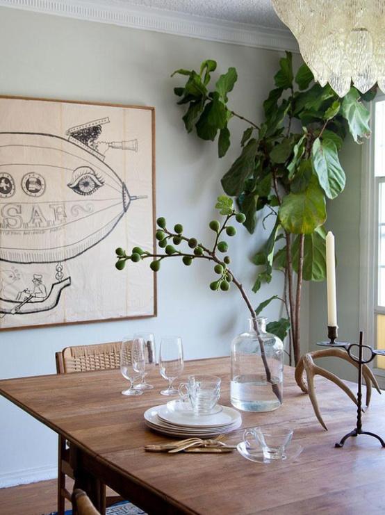 diningroom plant