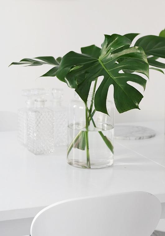 plant living 02