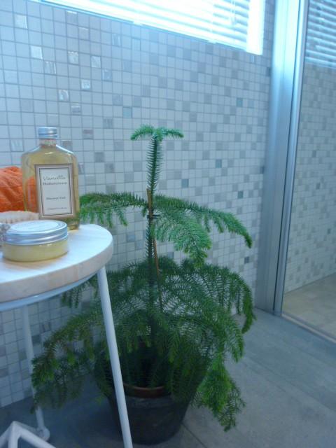 badet hytte03